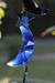 Wind chimes, 'Blue Moon and Stars' - Agate Wind Chimes (image 2c) thumbail