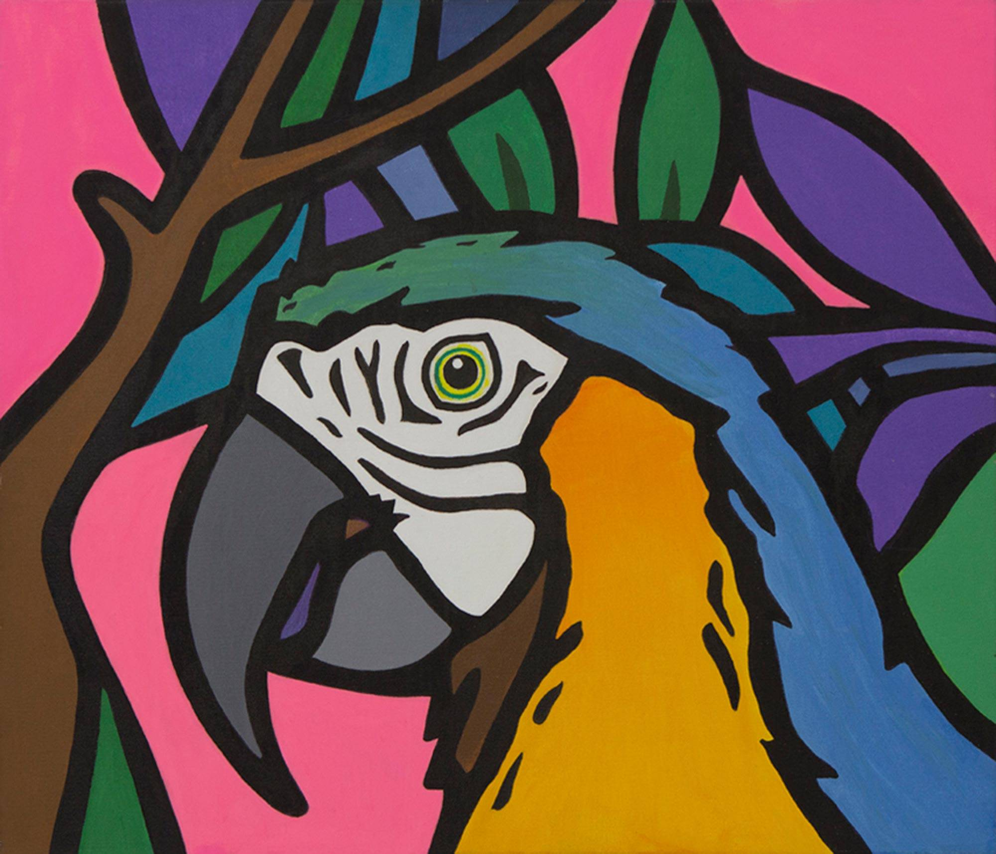 Unicef Uk Market Amazon Macaw Bird Pop Art Style Signed