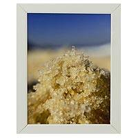 'Grains of Sand' - Original Brazilian Framed Color Photograph