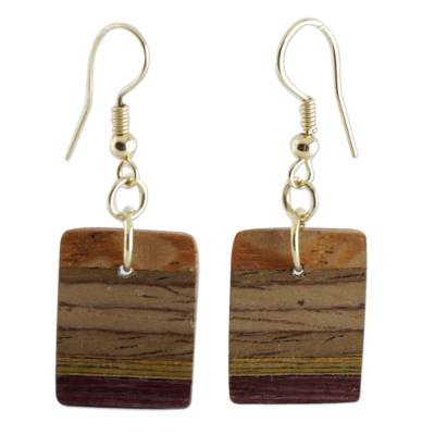 Wood dangle earrings, 'Forest Colors' - Handcrafted Brown Wood Dangle Earrings from Brazil