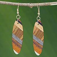 Wood dangle earrings, 'Forest Excitement' - Brown Wood Oval Shaped Dangle Earrings from Brazil