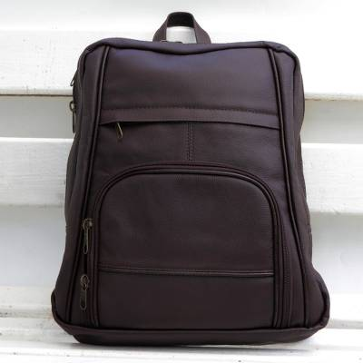 Leather backpack, 'Studious Adventurer' - Handcrafted Leather Backpack in Chestnut from Brazil