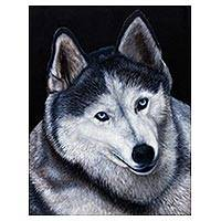 'Husky' - Signed Portrait of a Husky Dog from Brazil