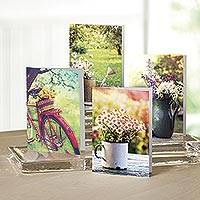 UNICEF everyday cards, 'Days in the Garden' (set of 12) - Days in the Garden UNICEF All-Occasion Cards (set of 12)