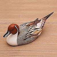 Wood statuette, 'Pintail Duck' - Hand Carved Albesia Wood Duck Statuette from Bali