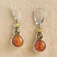 Amber dangle earrings, 'Ancient Magic' - Tricolor Baltic Amber Earrings