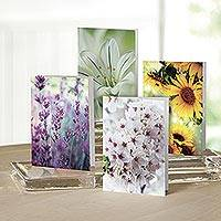 UNICEF Floral all-occasion cards, 'Fields in Bloom'  (set of 12) - Fields in Bloom UNICEF All-Occasion Cards (set of 12)