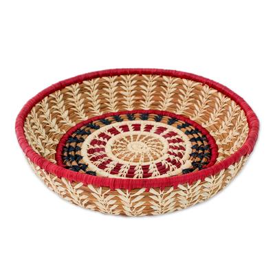 Natural fibers basket, 'Mother Nature' - Intricate Handmade Guatemalan Pine Needle Basket with Embroi