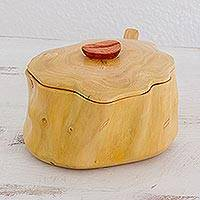 Wood sugar bowl, 'Sweet Acatenango' - Handmade Modern Wood Sugar Bowl with Spoon