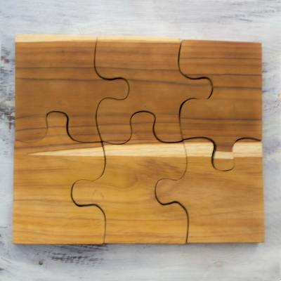 Teak trivets, 'Puzzle' (set of 6) - Six Interlocking Eco-Friendly Teakwood Trivets