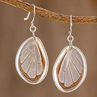 Butterfly wing dangle earrings, 'Glasswing Beauty' - Glasswing Butterfly Wing Dangle Earrings from Costa Rica