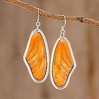 Butterfly wing dangle earrings, 'Orange Julia' - Julia Butterfly Wing Dangle Earrings from Costa Rica