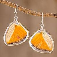 Butterfly wing dangle earrings, 'Bright Julia' - Julia Butterfly Wing Dangle Earrings from Costa Rica