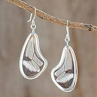 Sterling silver dangle earrings, 'Glasswing Elegance' - Sterling Silver and Glasswing Butterfly Dangle Earrings