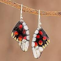 Enameled copper dangle earrings, 'Amazing Wings'