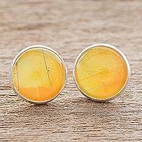 Butterfly wing stud earrings,