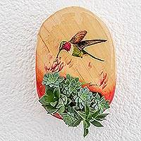 Wood wall planter, 'Fresh Nectar' - Red Edged Hummingbird Hand Painted Pinewood Wall Planter