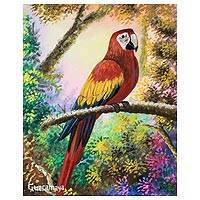 'Macaw' - Realist Painting of a Macaw from Guatemala