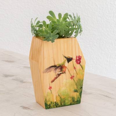 Wood planter, Hummingbird in Nature