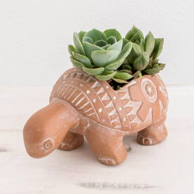 Terracotta flower pot, 'Busy Brown Turtle' - Busy Brown Ceramic Turtle Flower Pot from El Salvador