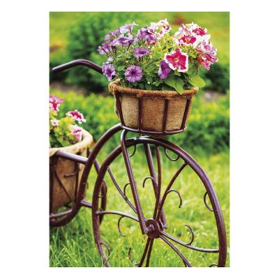 UNICEF everyday cards, 'Glorious Gardens' (set of 10) - Unicef Charity Greeting Cards