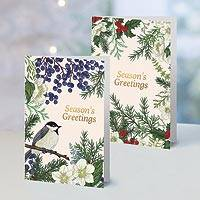 UNICEF holiday greeting cards, 'Botanical Christmas' (set of 10) - UNICEF Botanical Holiday Cards (Set of 10)
