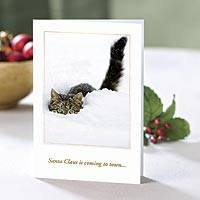 UNICEF holiday greeting cards, 'Santa Claus is Coming...' (set of 10) - UNICEF Cat Themed Holiday Cards (Set of 10)