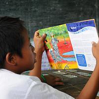 5 Story books for children - 5 Story books for children