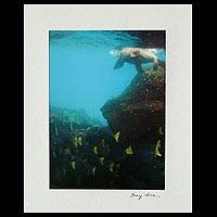 'That Second Glance' - Color Photograph of Sea Lion and Yellow Tail Fish