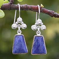 Sodalite earrings, 'Temple of the Flowers' - Sodalite earrings