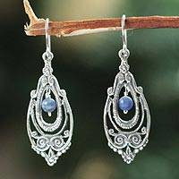 Sodalite dangle earrings, 'Classic Belle'