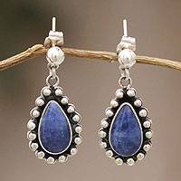 Sodalite dangle earrings, 'Details' - Unique Sterling Silver Dangle Sodalite Earrings