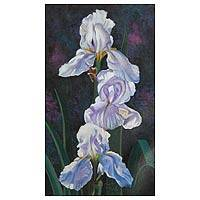 'White Iris' - Floral Realist Painting
