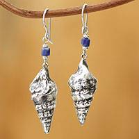 Sterling silver and sodalite dangle earrings, 'Marine Memoirs'