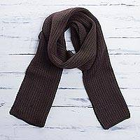 Scarf, 'Eggplant Vine' - Striped Knit Wrap Scarf in Olive and Eggplant from Peru