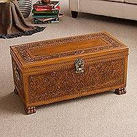 Leather and cedar wood chest, 'Majestic Memories'