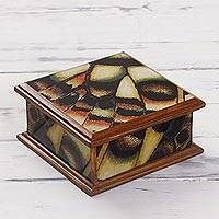 Reverse painted glass decorative box, 'Butterfly Daydream' - Square Reverse Painted Glass Decorative Box from Peru