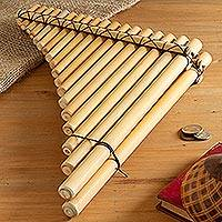 Natural cane pan flute, 'Andean Symphony' - Handmade Natural Cane Pan Flute from Peru