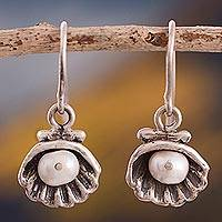Cultured pearl dangle earrings, 'Pearl Caretakers' - Cultured Pearl Clam Dangle Earrings from Peru