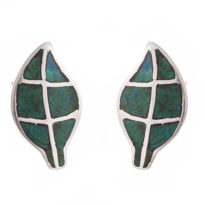 Chrysocolla Leaf Button Earrings from Peru