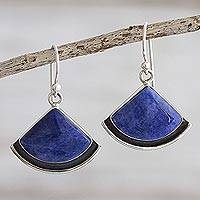 Sodalite dangle earrings, 'Expression' - Handmade Sodalite Dangle Earrings