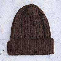 100% alpaca hat, 'Brown Mountain Roads' - Handcrafted Womens Alpaca Wool Beanie from Peru