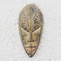 Ewe wood mask, 'Brilliant Mind' - Ewe Wood Mask