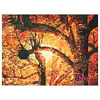 'Sunset in the Woods' (2007) - Landscape Fine Art Collage