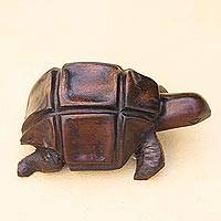 Ebony figurine, 'African Tortoise' - Hand Carved Ebony Wood Turtle from Ghana