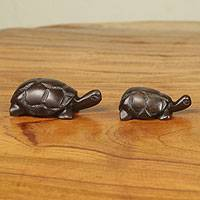 Ebony sculptures, 'Tortoise Family' (set of 5) - Hand Carved Ebony Wood Turtle Sculptures (Set of 5)