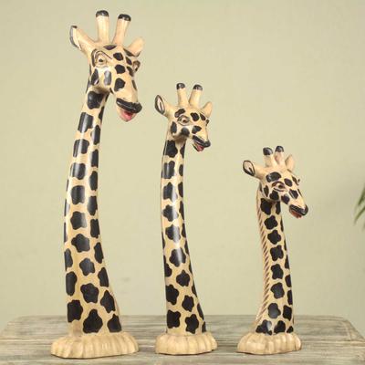 Set Of 3 Hand Carved Giraffe Head Sculptures From Ghana Giraffe