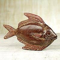 Wood sculpture, 'Spadefish' - Sese Wood Sculpture of a Fish by a Ghanaian Artist