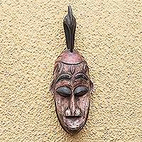 African wood mask, 'Adi Wofie Bird' - Bird-Themed African Wood Mask from Ghana