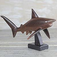 Ebony wood sculpture, 'Great White Shark'